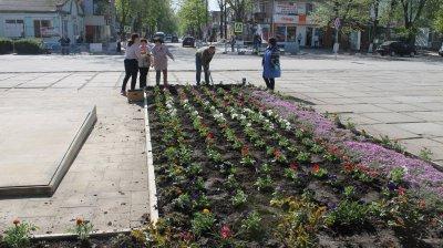 Critică, dar se inspiră. Primarul de Glodeni, ales pe listele partidului condus de fugarul penal Usatîi, a copiat ideea covorului de flori de la Chişinău