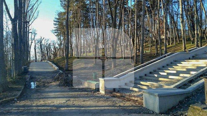 Lucrările de reparaţie a scărilor din parcul Valea Morilor, continuă. Vor fi iluminate, iar spațiul din jur va fi înverzit