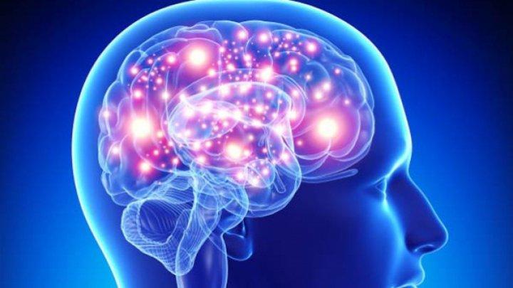 Studiu: Creierul uman se actualizează pentru a se obişnui cu o situaţie neaşteptată