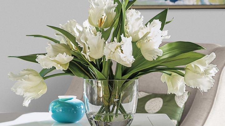 Ce să pui în vaza cu flori pentru ca acestea să nu se mai ofilească