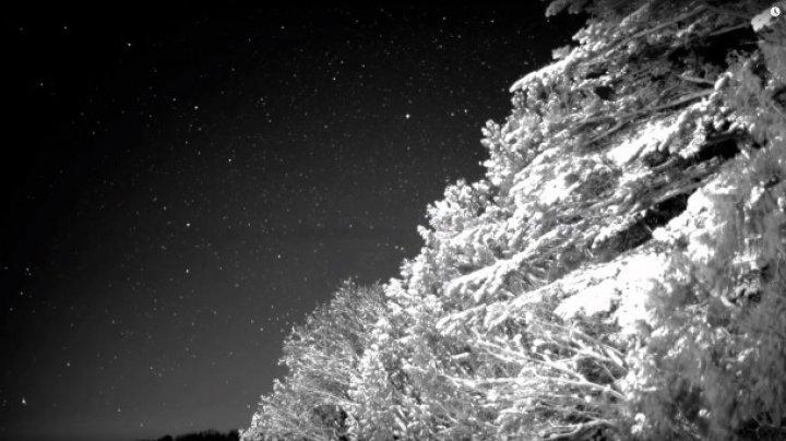 Canon a dezvoltat un senzor de imagine care permite filmări slow-mo în întuneric aproape total
