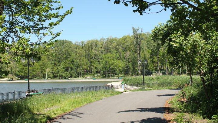 Parcul Valea Trandafirilor, fără gherete şi vânzători în stradă. Primăria Chişinău a dispus amenajarea zonei de odihnă