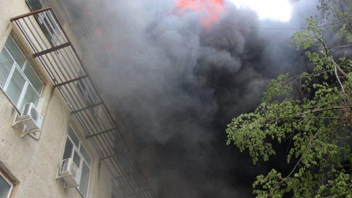 Angajaţii Institutului de Zoologie MUNCESC ÎN CONDIŢII GRELE, la o săptămână de la producerea incendiului