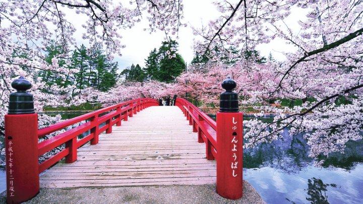 """Japonia este cunoscută sub denumirea de """"Țara Soarelui Răsare"""". Care este motivul"""