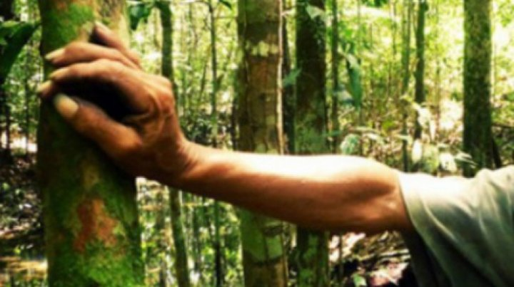 DESCOPERIRE EXCEPŢIONALĂ! Ce a găsit un tânăr într-o pădure