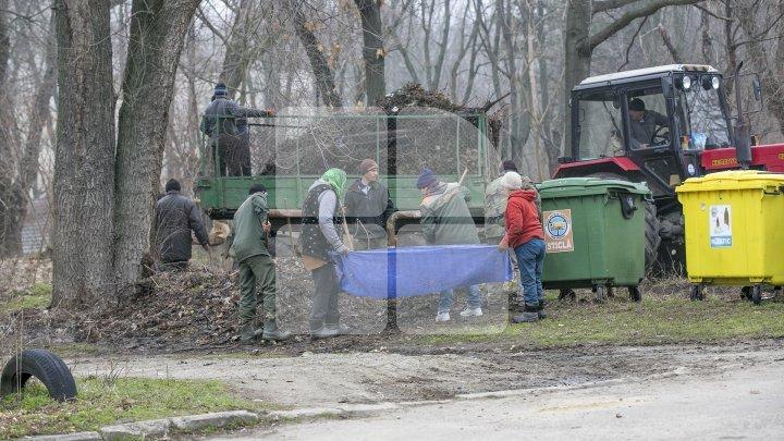 Zona de odihnă şi agrement din Parcul Râşcani va fi amenajată. Construcțiile ilegale vor fi evacuate