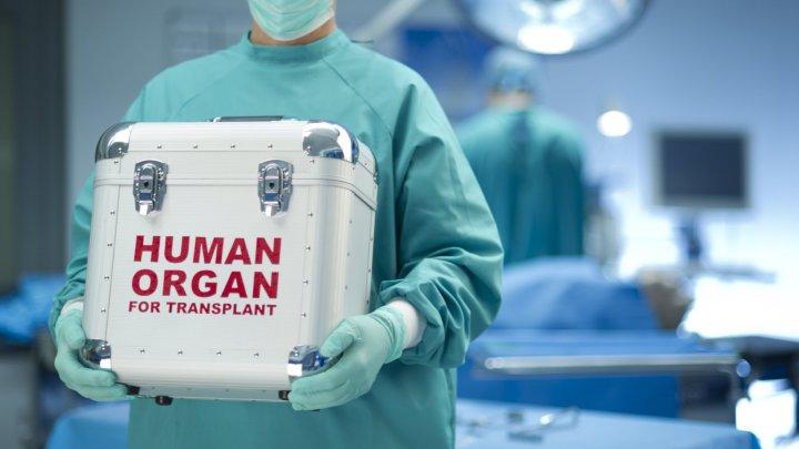 Cercetătorii din Elveția au dezvoltat un dispozitiv care poate păstra ficatul uman timp de o săptămână între prelevare și transplant