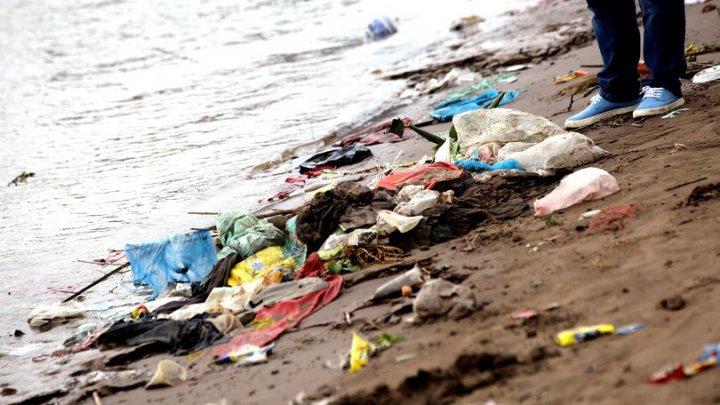 UIMITOR! A fost creată enzima care devorează plasticul. Aceasta ar putea fi folosită pentru a salva oceanele