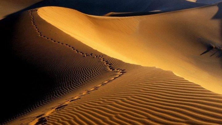 STUDIU: Sahara s-a extins cu 10% în 100 de ani, parţial din cauza schimbărilor climatice antropice
