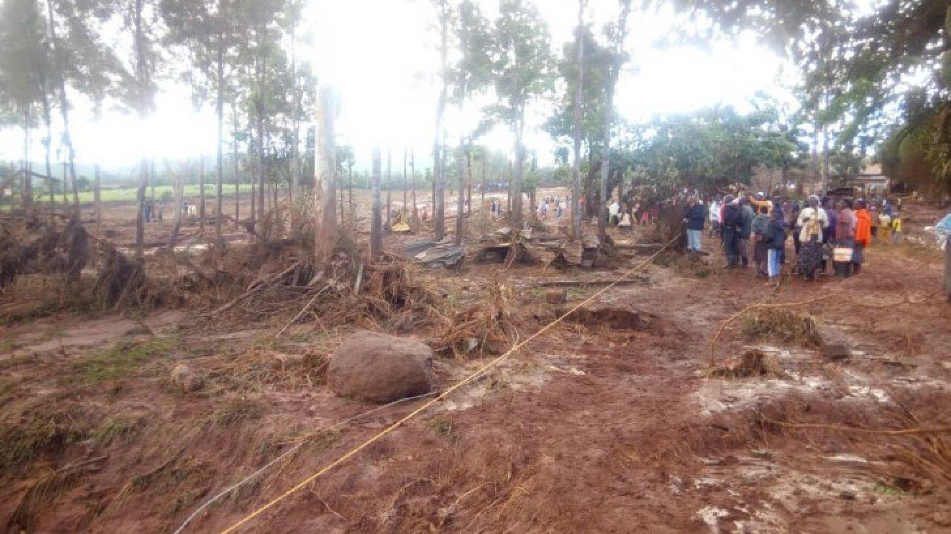 nazizi kenya pierdere în greutate doza de pierdere a grăsimilor hgh