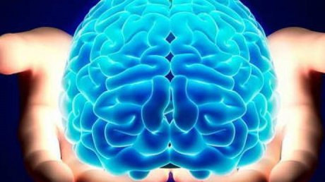 STUDIU: Două activităţi care sporesc considerabil eficienţa creierului