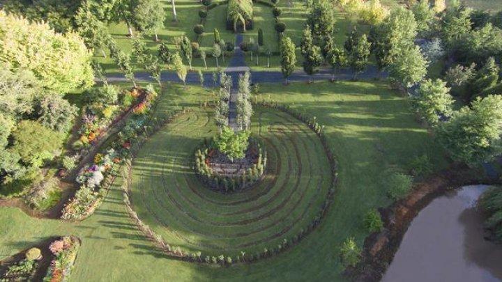 SPECTACULOS! Cum arată unica biserică din lume din copaci vii (VIDEO/FOTO)