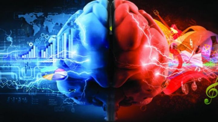 Două activităţi care sporesc considerabil eficienţa creierului