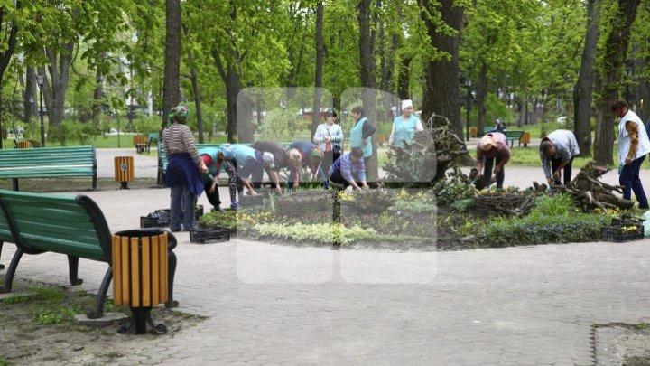 Toate zonele de odihnă și agrement din Capitală vor fi amenajate şi pregătite pentru sezonul de vară