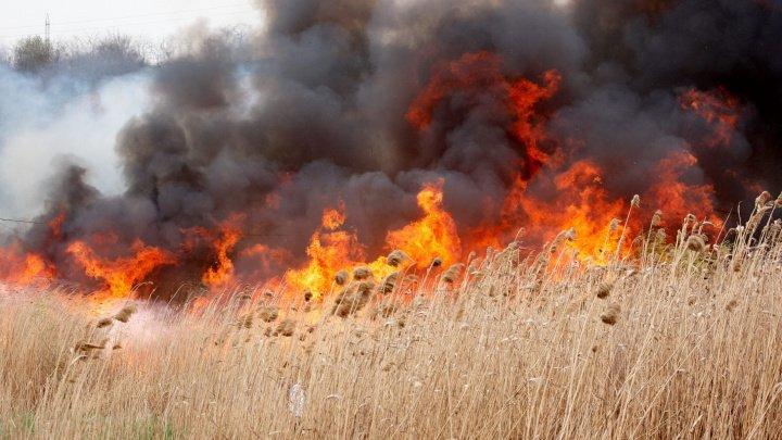METEOROLOGII PREVIN: Pericol excepţional de incendii pe teritoriul Republicii Moldova