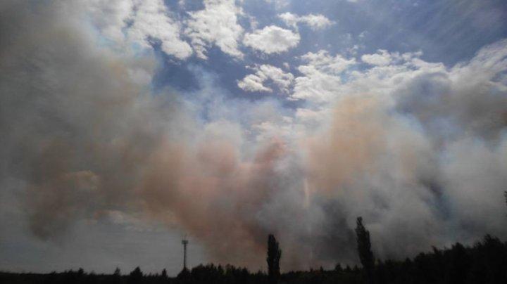 INCENDIU PUTERNIC în apropiere de Cernobîl. 130 de pompieri luptă cu flăcările (FOTO/VIDEO)