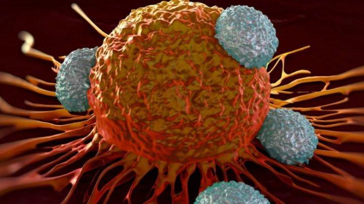 Descoperire uimitoare! O formă rară de cancer ar putea fi detectată mai devreme cu ajutorul unor simple analize de sânge