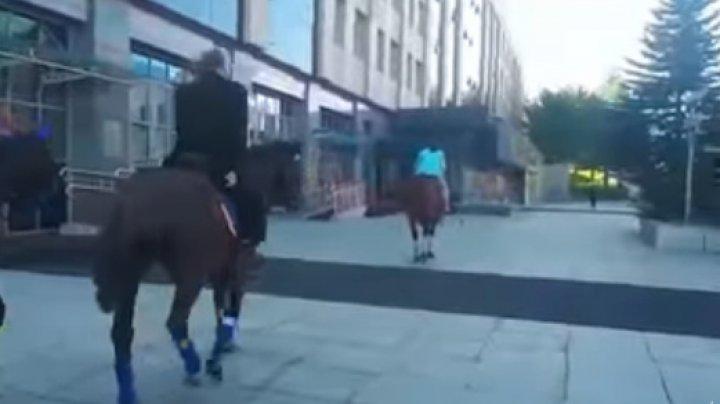 Un deputat din Kamchatka, AMENDAT pentru că nu şi-a parcat regulamentar calul cu care a venit la ședință (VIDEO)