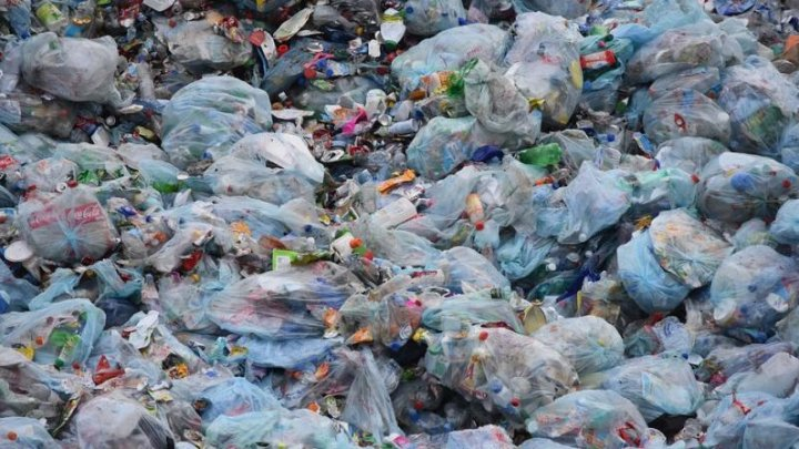 ALARMANT: Ultimul bastion de natură sălbatică din lume , ameninţat de deșeuri plastice
