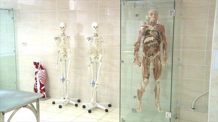 Studenţii de la medicină vor studia anatomia pe un cadavru care costă 40.000 de dolari