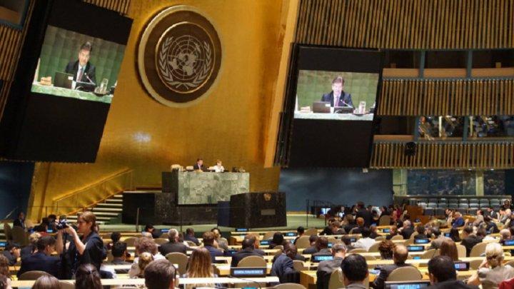 """Vlad Darie: """"Rezoluția ONU este un recurs la demnitatea noastră națională"""""""
