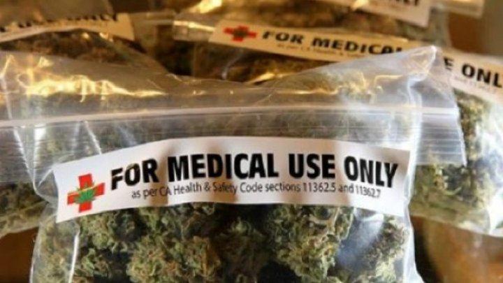Canabisul medicinal va putea fi procurat LEGAL, în Marea Britanie. Care este motivul