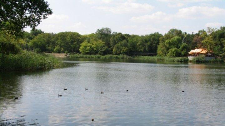 TRAGIC. Un copil de 3 ani s-a înecat în lacul din Parcul Valea Trandafirilor