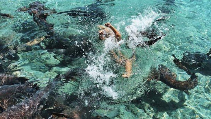 O tânără, model pe Instagram, atacată de rechini în timp ce poza în Bahamas (FOTO/VIDEO)