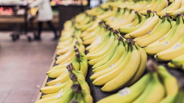 O specie importantă de banane, pe cale de dispariţie