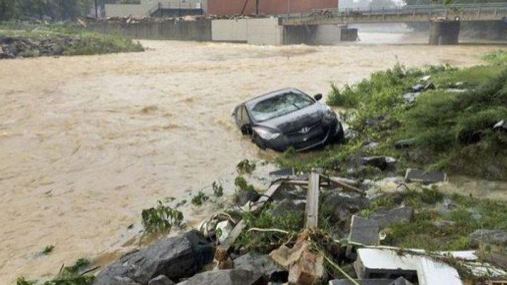 Singurul detaliu pozitiv din catastrofele naturale ale ultimilor 13 ani