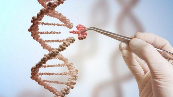 Descoperire incredibilă! Cercetătorii au identificat 14 arii genetice, dintre care şapte până acum necunoscute