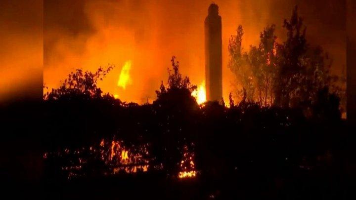 Cine sunt persoanele care au provocat incendiile din Grecia