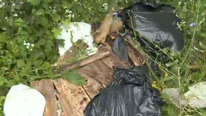 ASTA DA LECŢIE pentru cei NECIVILIZAŢI! O femeie a primit prin poștă gunoiul aruncat la marginea pădurii