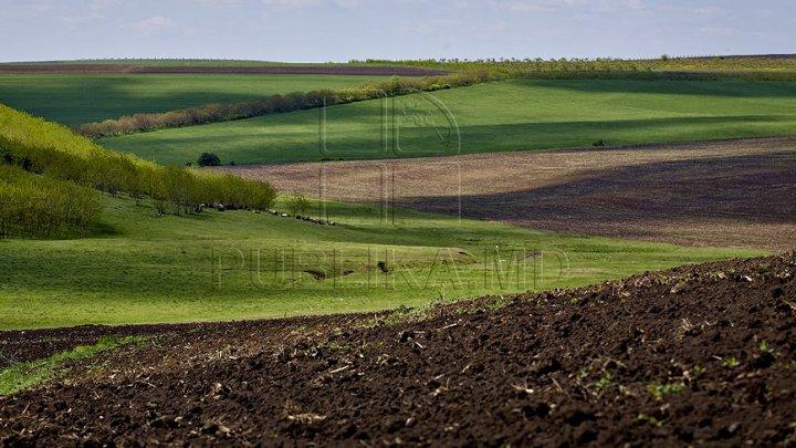64 % din suprafață totală a terenurilor agricole din raionul Dubăsari a fost documentată cu certificate