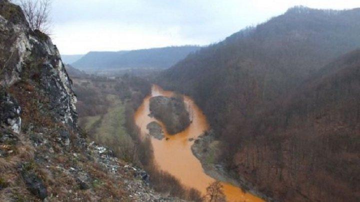 Majoritatea râurilor și lacurilor din Europa nu întrunesc condițiile de calitate