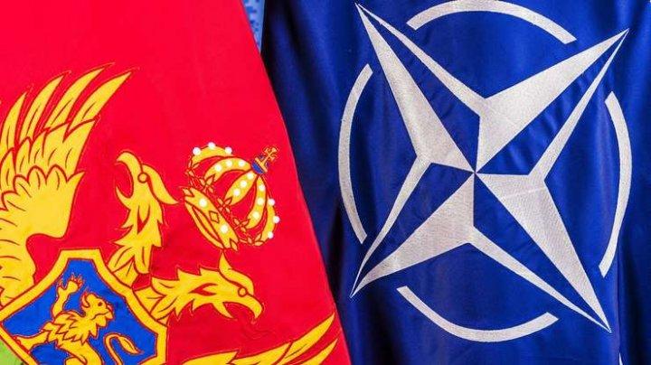Muntenegru vrea să adere la Centrul NATO pentru apărare cibernetică de la Tallinn până la sfârşitul anului 2019