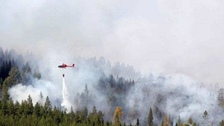 Pompierii francezi merg în Suedia pentru a participa la stingerea incendiilor de pădure