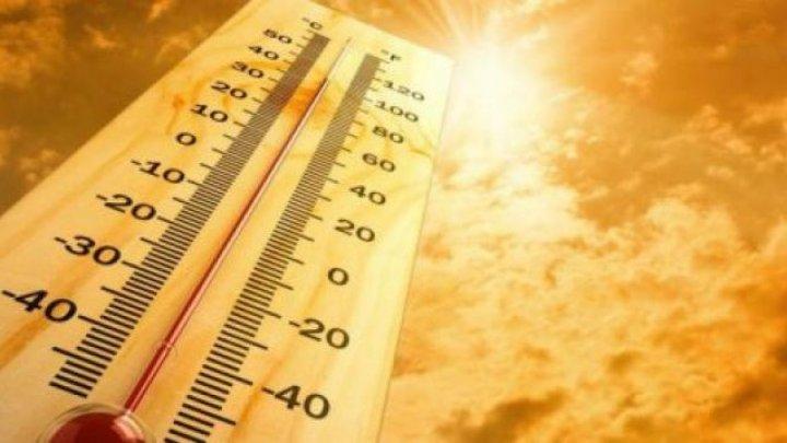 Planeta se încălzește: Mai 2020, cea mai caldă lună mai din ultimii 141 de ani (HARTĂ)