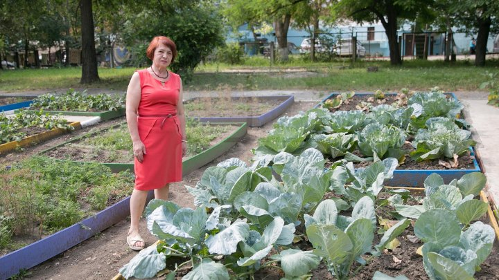 Un exemplu demn de urmat. Picii unei grădinițe din Capitală cresc legume în curtea instituției (GALERIE FOTO)