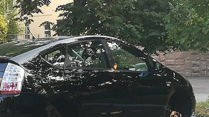 Dimineaţă cu ghinion pentru un şofer. Şi-a parcat maşina în curtea casei... şi a rămas fără ROŢI (FOTO)