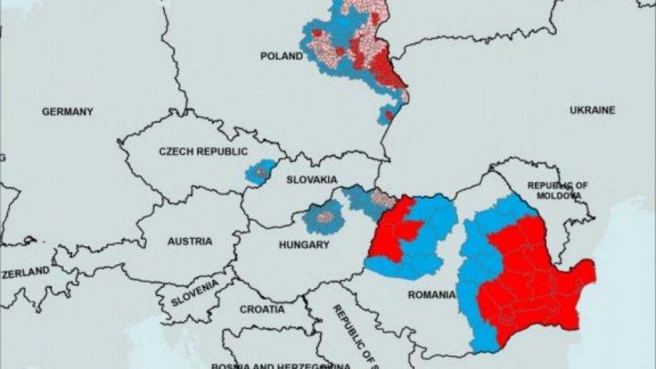 Harta DEZASTRULUI: România, țara cea mai afectată de virusul care omoară porcii