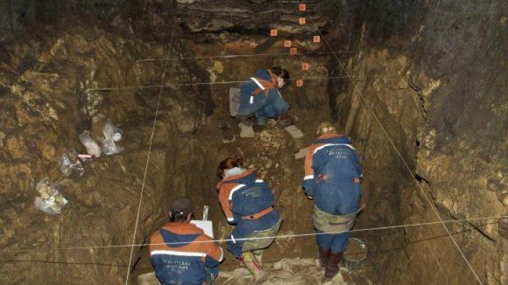 PRIMA DOVADĂ că omul hibrid a existat, descoperită într-o peșteră din Siberia