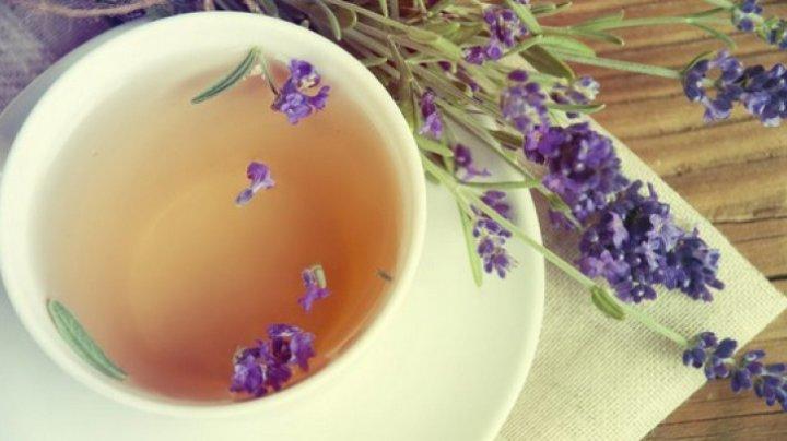 BINE DE ŞTIUT! Cât de benefic este ceaiul de lavandă şi ce boli tratează