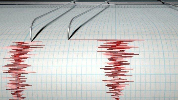 Cutremurile vor putea fi prezise mai rapid, datorită alianței între Google și Universitatea Harvard