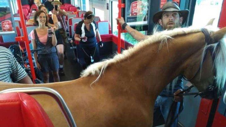 INCREDIBIL! Vezi cum a fost surprins un bărbat într-un tren regional
