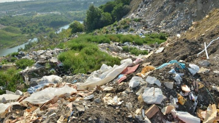 Groapă de gunoi pe malul râului Bâc. Primăria sesizează Procuratura şi Agenţia Ecologică