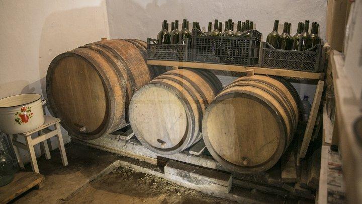 Butoaiele, la mare căutare. Secretele unui dogar din Cărpineni pentru a avea un vin bun (FOTOREPORT)