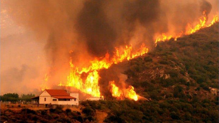 Noi incendii în Grecia. 500 de persoane au fost evacuate din insula Evia
