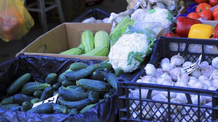 IMPACT: De ce majoritatea legumelor de pe piaţă sunt de import (PROMO)