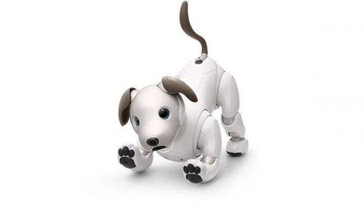 Sony aduce pe piaţă câinele robot Aibo la un preţ fascinant